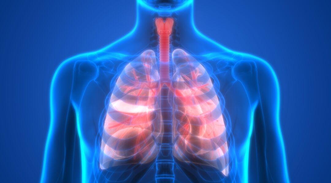 布加替尼(brigatinib)有间质性肺病药副作用吗-